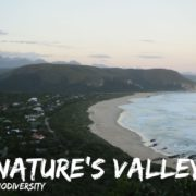 Natures Valley